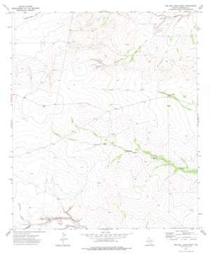 Two Mill Draw West topo map