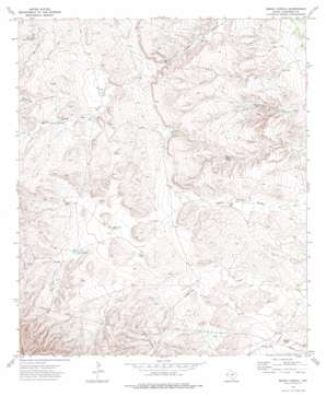 Emory Corral topo map