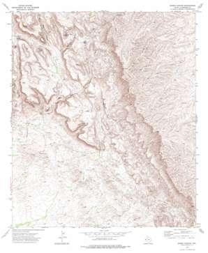 Burro Canyon topo map