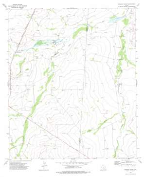 Derrick Draw topo map