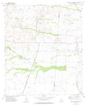 Screw Bean Draw East USGS topographic map 31104g1
