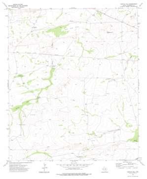Castile Hill topo map