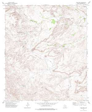 Long Point topo map