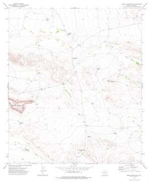 Sneed Mountain topo map