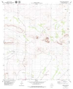 Pierce Ranch USGS topographic map 31105c3
