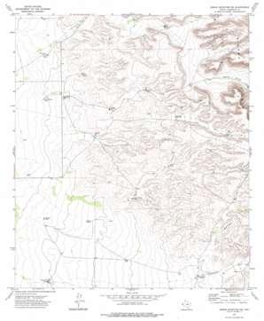 Sneed Mountain Ne topo map