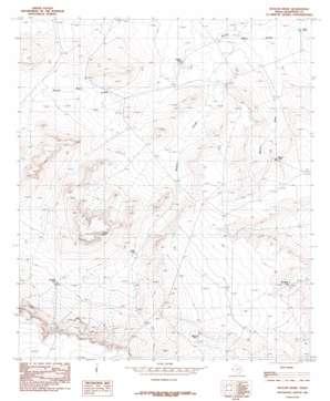 Baylor Draw topo map