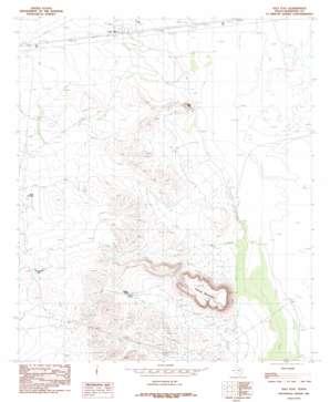 Salt Flat topo map