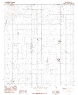 Dell City USGS topographic map 31105h2