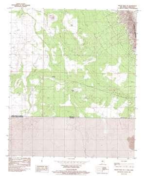 Mount Riley Se topo map