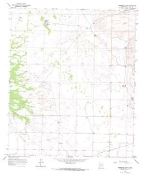 Mesquite Lake topo map