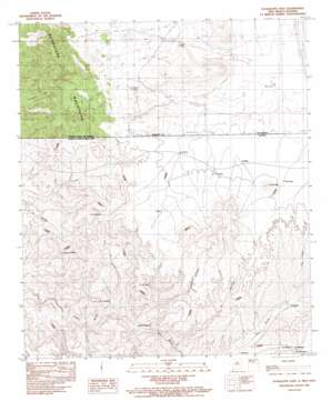 Guadalupe Pass topo map