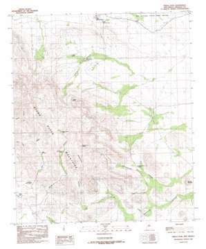 Pierce Peak topo map
