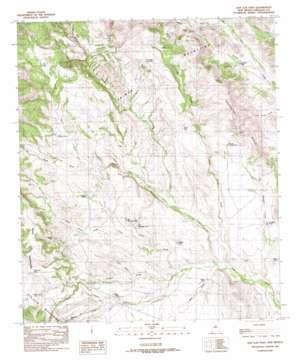 San Luis Pass USGS topographic map 31108d6