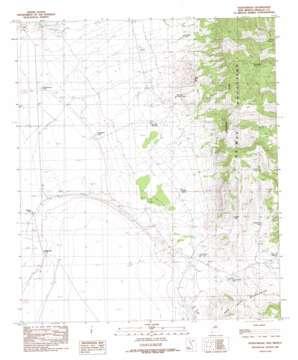 Fitzpatricks USGS topographic map 31108d7