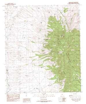 Animas Peak topo map