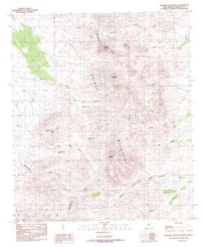 Gillespie Mountain topo map
