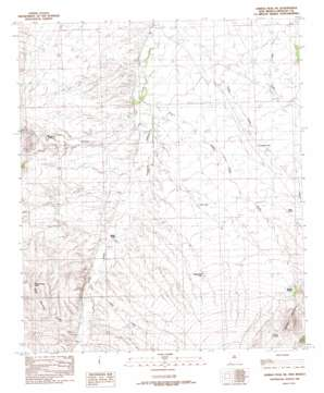 Animas Peak Ne USGS topographic map 31108f7