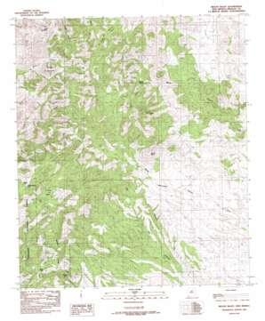 Mount Baldy topo map