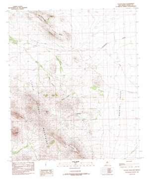Playas Peak USGS topographic map 31108h4