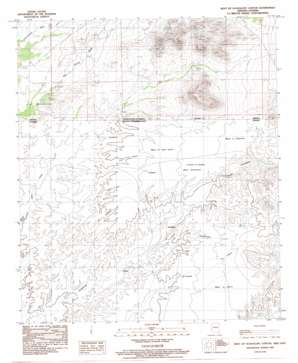 West Of Guadalupe Canyon topo map