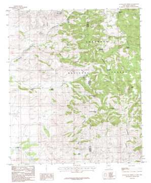 Guadalupe Spring topo map
