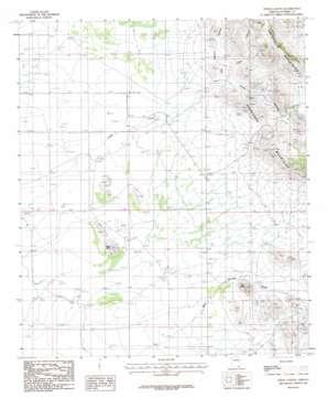 Leslie Canyon topo map