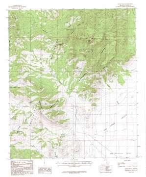 Swede Peak topo map