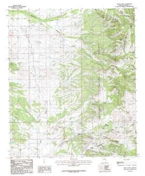 Bruno Peak topo map