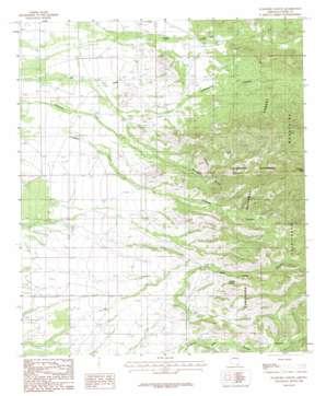 Stanford Canyon topo map