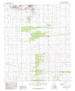 Pat Hills South topo map