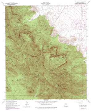 Miller Peak topo map