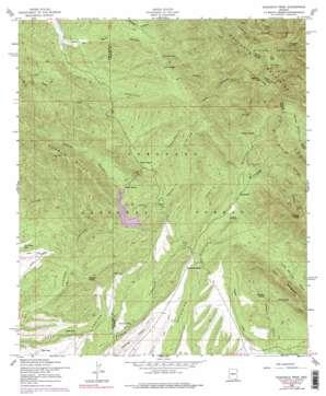 Huachuca Peak topo map