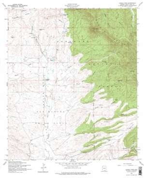 Canelo Pass USGS topographic map 31110d5