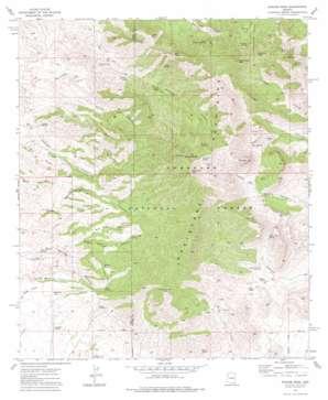 Apache Peak topo map