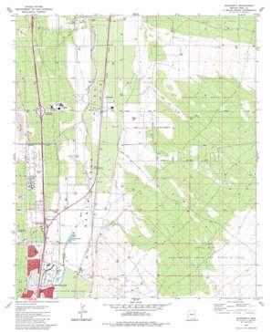 Sahuarita USGS topographic map 31110h8
