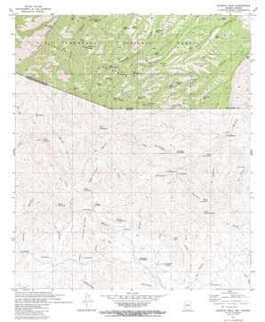 Pajarito Peak topo map