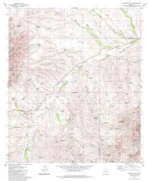 Saucito Mountain topo map