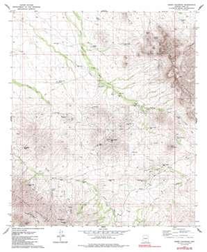 Cerro Colorado topo map