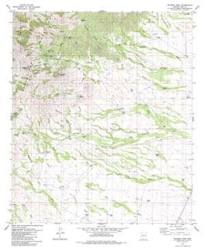 Mildred Peak topo map