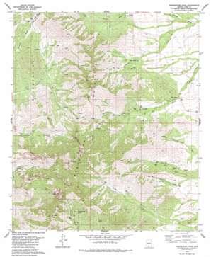 Baboquivari Peak topo map