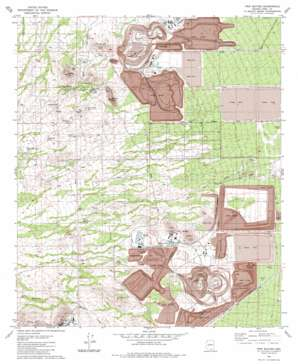 Twin Buttes USGS topographic map 31111h1