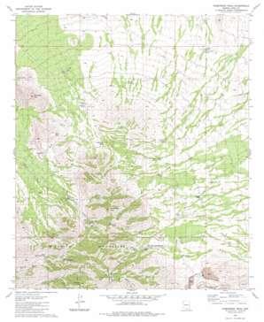 Samaniego Peak topo map