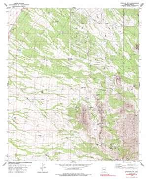 Stevens Mountain topo map