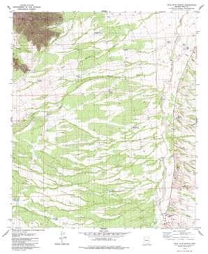 Palo Alto Ranch USGS topographic map 31111h4