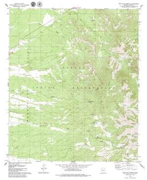 San Juan Spring topo map