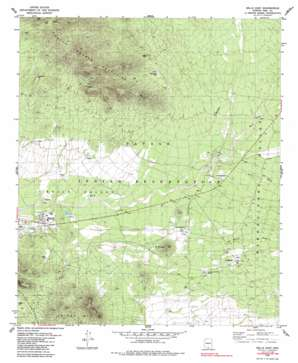 Sells East topo map