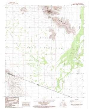 Bailey Peak topo map
