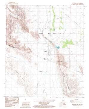 Menagers Lake topo map