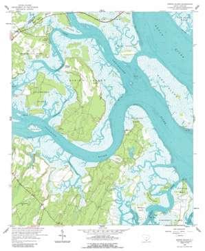 Spring Island USGS topographic map 32080c7